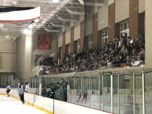 Hockey Crowd